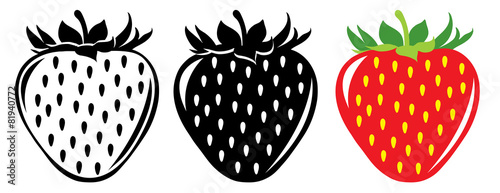 Vector strawberries in color and black and white © Anna Kucherova