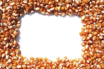 cornice di mais giallo