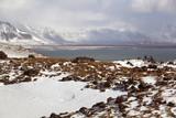 Impressive volcanic landscape on the Snaefellsnes peninsula poster