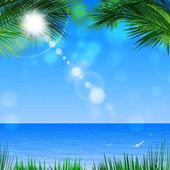 Tropical View Through Palm Trees
