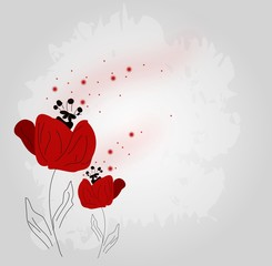 Poppies background