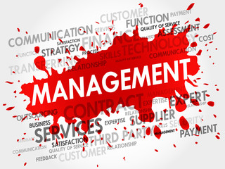 Management related items words cloud, business concept