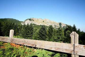 riserva parco nazionale orecchiella appennino tosco emiliano