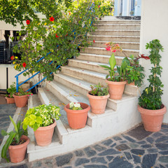 flowers in vases on stairs on Crete in Greece