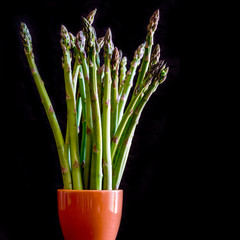asparagus on black background