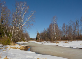 Spring landscape on the river with melting ice and trees on the