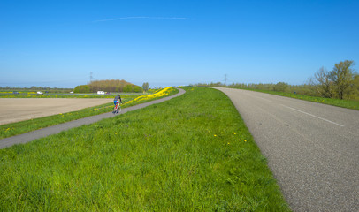 Cyclist biking uphill under a clear sky in spring