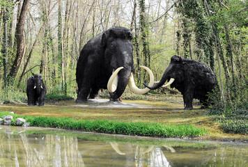Wooly Mammoth Family near Shoreline