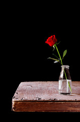 red rose in a glass vessel on a rustic wooden table
