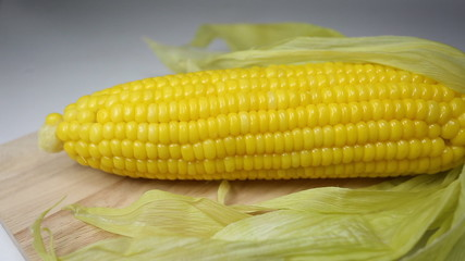 Sweet corn in kitchen room - video pan