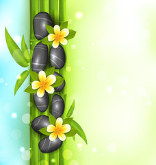 Spa therapy background with bamboo, stones and frangipani flower