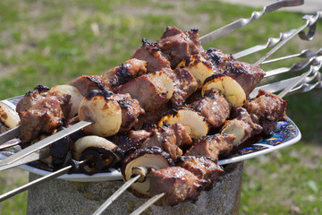 Meat grilled caucasus barbecue on plate