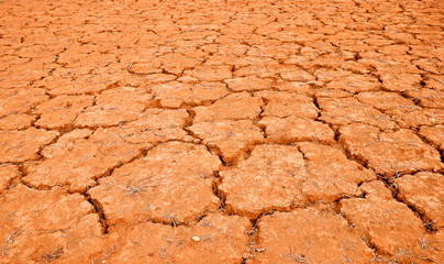 Cracked red land