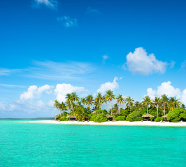 Tropical island beach with palm trees and cloudy blue sky
