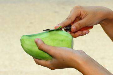The mango casing
