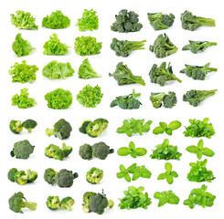 broccoli,green lettuce and mint isolated on white background