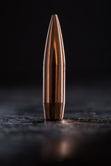 One copper bullet with bright reflections