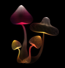 Abstract design of colorful mushroom in black isolated backgroun