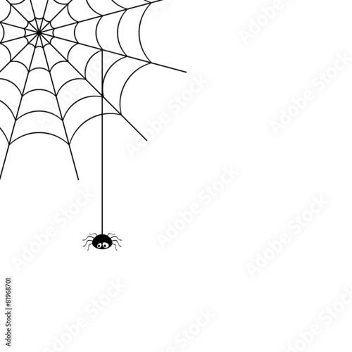 spider web - 81968701