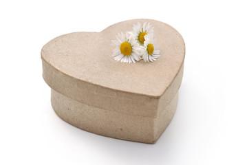 pâquerette sur boîte en forme de cœur en carton
