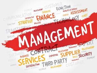 Management word cloud, business concept