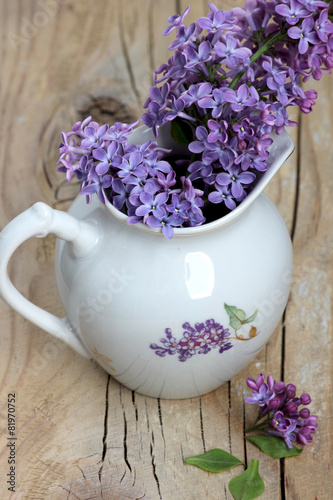 Foto op Canvas Lilac Lilac branch