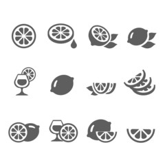 Lemon  lime icons vector set