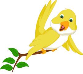 cute yellow bird