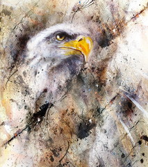 beautiful painting of eagle on an abstract background, color