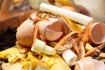 Biological waste, rotten food, leftovers
