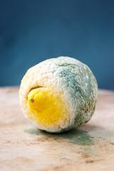 Moldy organic lemon on wooden background