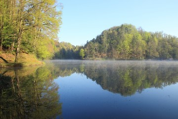 Foggy spring morning on the lake