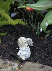 Kleiner Friedhofsengel im Frühling