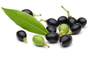 Bay fruit