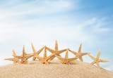 Starfish. Starfish  with ocean , beach and seascape, shallow dof