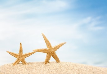 Holiday. Starfish in crown with ocean, beach,white boat  and