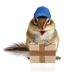 comical chipmunk courier hold parcel, delivery concept