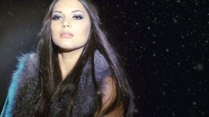 Beautiful Woman in Luxury Silver Fox Fur Jacket
