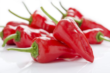 fresh red chilies on white background display