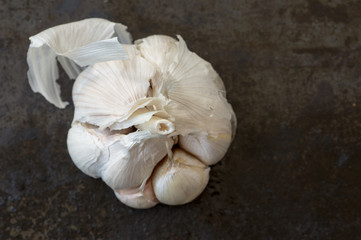 Large head of garlic
