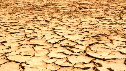 Cracked dry earth. Global warming concept. Full HD