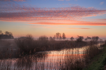 Colorful sunrise over a wetland in Drenthe, the Netherlands.