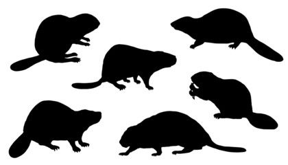 beaver silhouettes