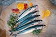 mackerel - 81992901