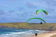 paraglider at Perranporth - 81993354