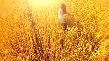 Beauty girl running on yellow wheat field. Aerial shot