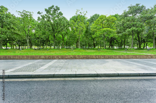 urban road with green trees - 81995564