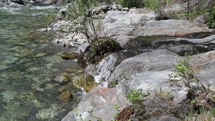 Creek Feeding Into North Fork American River