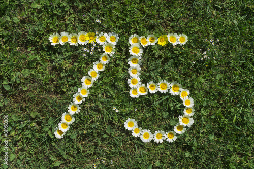 Numeral 75 of marguerites in gras Poster