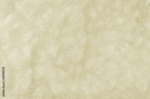 Foto op Canvas Textures Raw Merino Sheep Wool Macro Closeup Horizontal White Texture